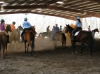 Riders go through the paces at the de-spooking clinic.